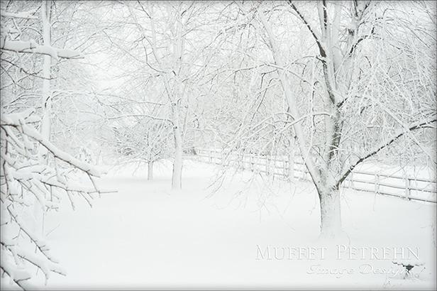 0074-snow 2 13-2